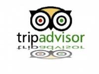 TripAdvisor, Expedia и Booking.com заподозрили в нечистоплотности