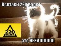 """""""220 Вольт"""" проведет круглый стол по е-сommerсе"""
