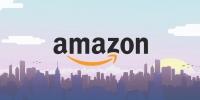 Amazon отложил выход на рынок Южной Азии