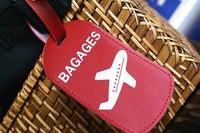 Пассажиры самолётов заменят курьеров