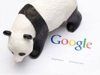 """Google """"отозвал"""" новую версию """"Панды""""?"""
