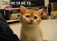 Черная пятница в России началась с фейла