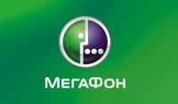 """Онлайн """"МегаФона"""" растет в сегменте бюджетных устройств"""