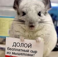 Россияне не готовы платить за контент