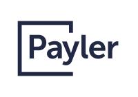 Payler подсчитал декабрьские покупки