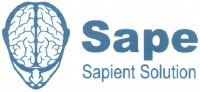 SAPE запускает RTB-платформу