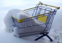Август заморозил интернет-торговлю