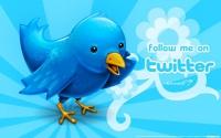 Twitter отчитается по каждому твиту