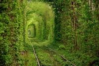 """Создаётся """"зелёный коридор"""" для посылок из Китая"""