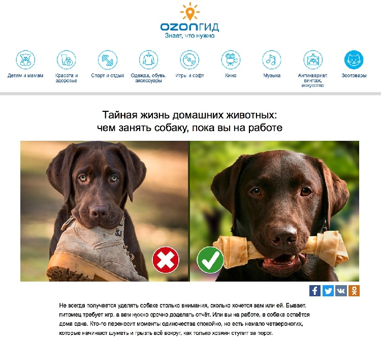 ozon_zhivotnye
