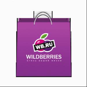 Wildberries построит хаб в Подмосковье осенью будущего года