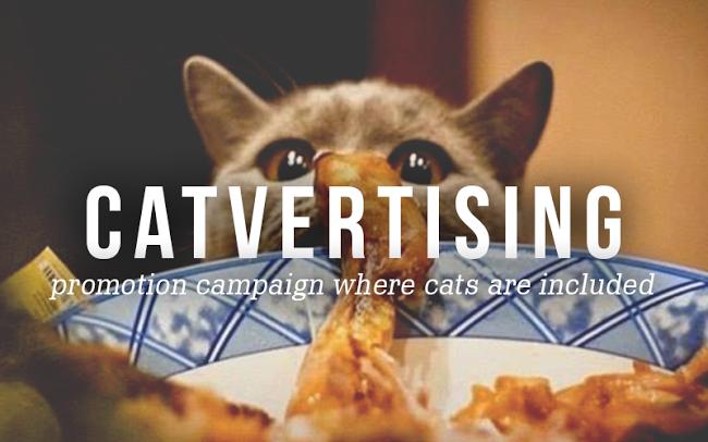 На какую рекламу в соцсетях обратят внимание?