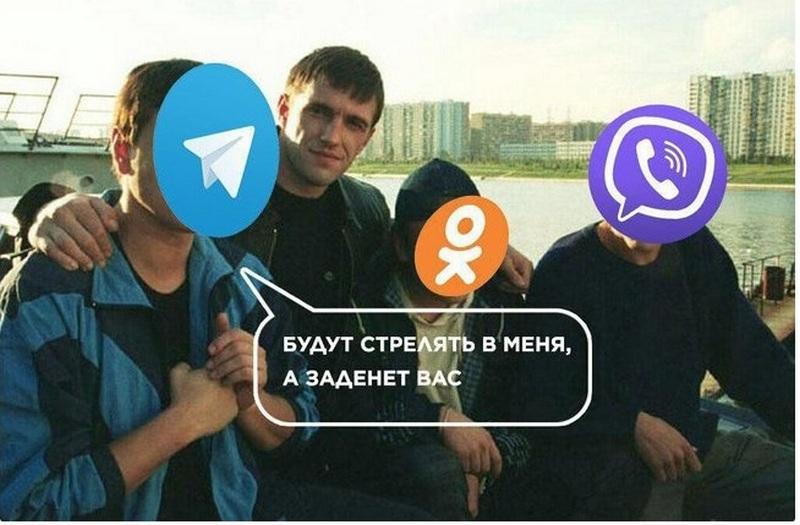 tele6