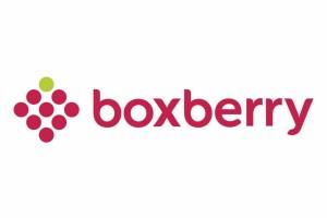 Boxberry начнет доставлять покупки с интернет-аукционов
