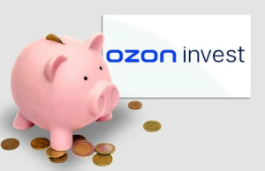 Ozon займет партнерам денег на 9 месяцев