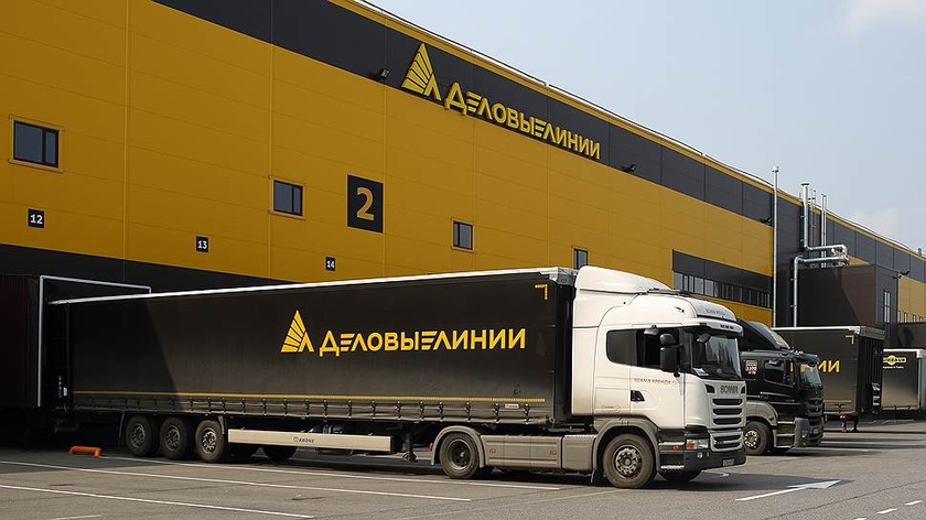 """Кипрский суд временно запретил совладельцу компании """"Деловые линии"""" операции с активами"""