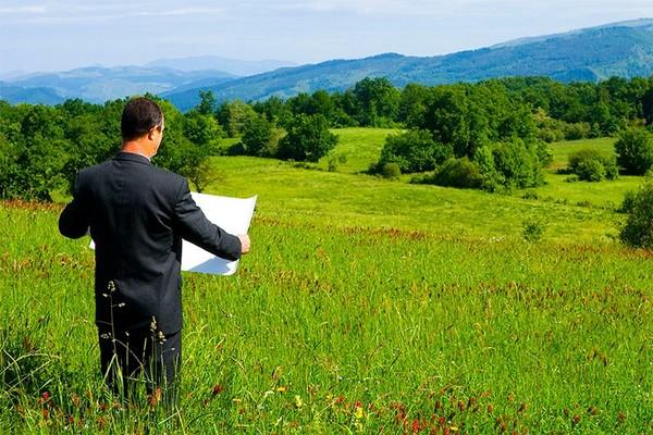 Новая госпрограмма: интернет-магазины и федеральный маркетплейс земельных участков