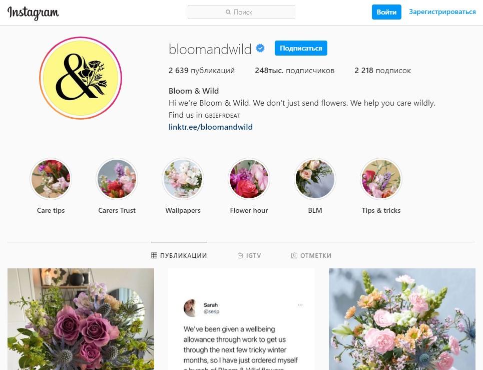 Bloom & Wild Flowers Instagram