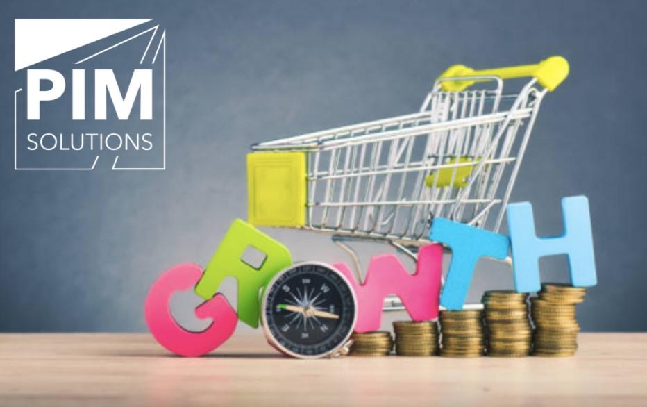 Абсолют Банк прокредитует интернет-магазины на 100 млн. рублей через PIM Solutions