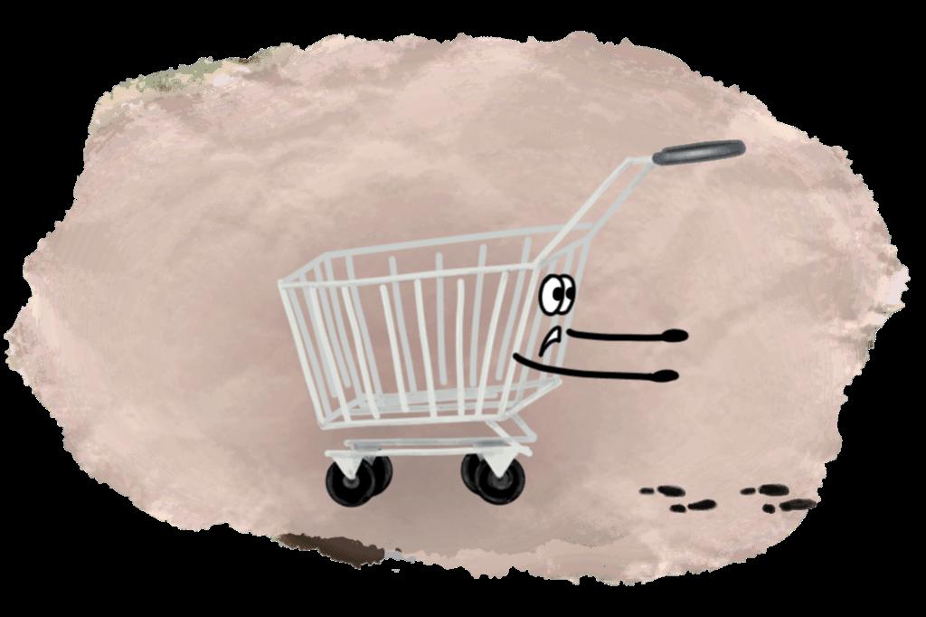 Странный новый тренд: прогулка по интернет-магазину с полной корзиной